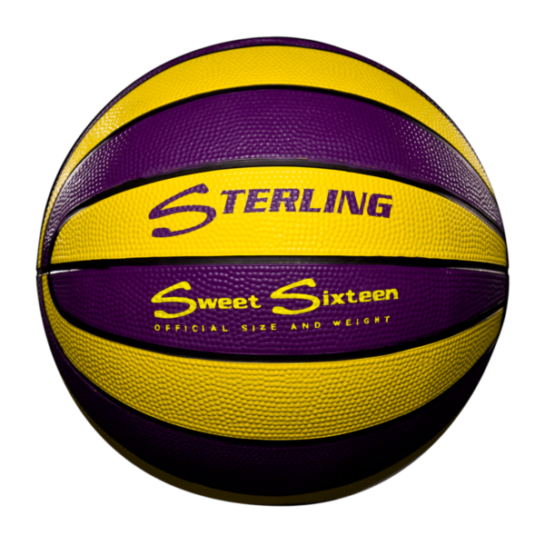 16 Panel Rubber Camp Basketball - Purple Gold