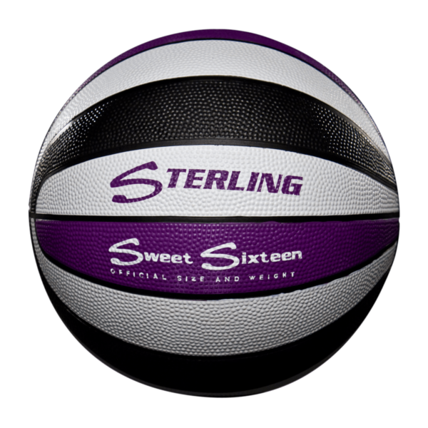 16 Panel Rubber Camp Basketball - Purple White Black