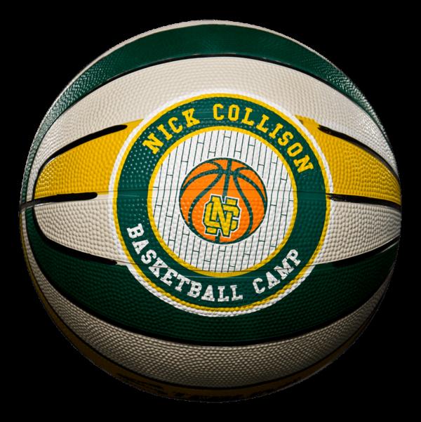 Custom 16 Panel Rubber Camp Basketball - Example 1