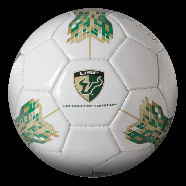Custom Mini Soccer Ball - Example 4