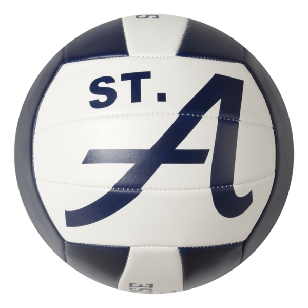 Custom Status XCEL Camp Volleyball - Example 4