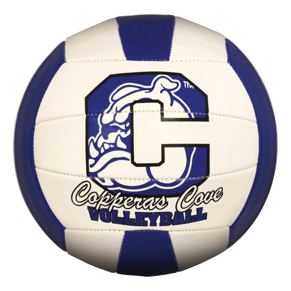 Custom Status XCEL Camp Volleyball - Example 9