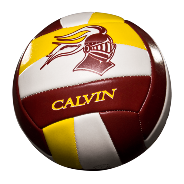 Custom Status Xcel Volleyball - Example 2