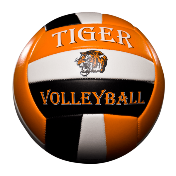 Custom Status Xcel Volleyball - Example 3