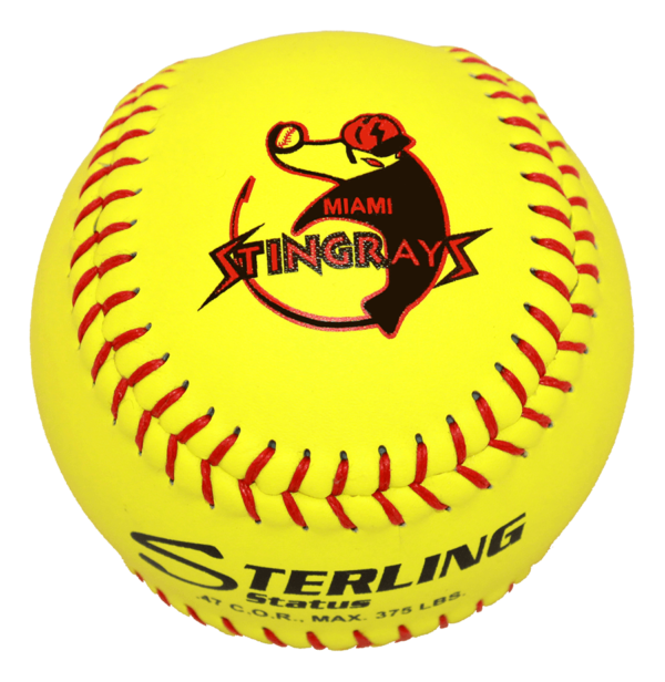 Speed Print Status FastPitch Game Leather Softball - Example 3