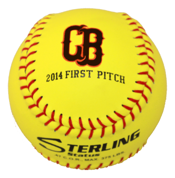 Speed Print Status FastPitch Game Leather Softball - Example 5