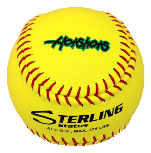 Speed Print Status FastPitch Game Leather Softball - Example 6