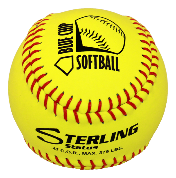 Speed Print Status FastPitch Game Leather Softball - Example 7