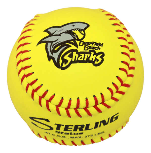 Speed Print Status FastPitch Game Leather Softball - Example 8