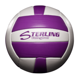 Status Xcel Camp Volleyball - Purple White