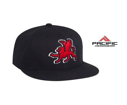 7D5 Snapback Hat